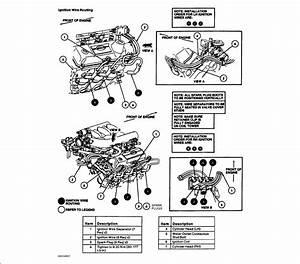 03 Ford Windstar 3 8 Firing Order