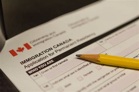 permanent resident form canada permanent resident card renewal services gerami law pc