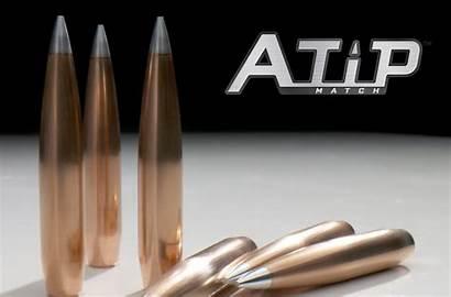 Tip Bullets Hornady Shot Screen
