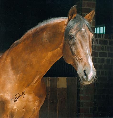 foto de ŚWIAT KONI WEDŁUG KAI I OLI: Ciekawostki o konich czystej