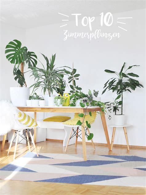 Hängende Pflanzen Wohnung by Hngende Zimmerpflanzen Deko Ideen Blumenel Topfpflanzen