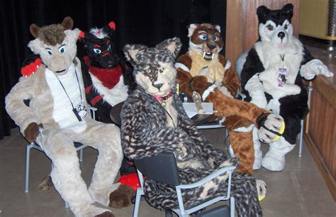 9 questions about furries you were too embarrassed to ask vox