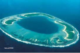 The main types of coral reef and how they are formed  Atoll Island Definition