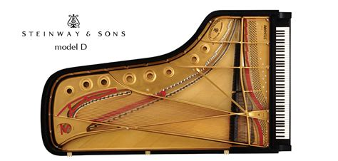 Rice Music House Steinway Model D - Rice Music House