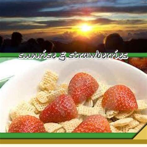 berrywinkle frozen yogurt home facebook