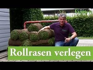 Rollrasen Verlegen Video : rollrasen verlegen youtube ~ Orissabook.com Haus und Dekorationen