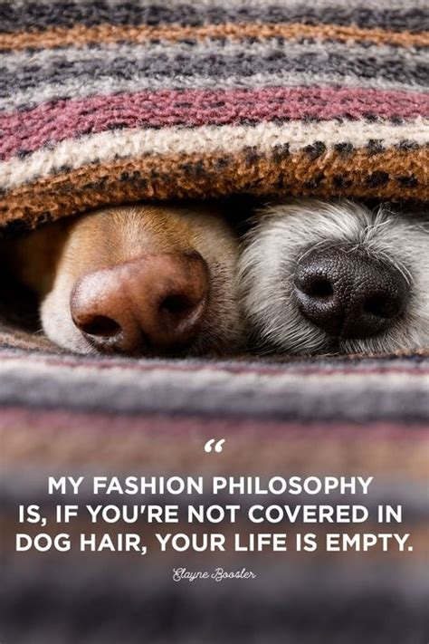 dog quotes cute sweet quotes  dogs