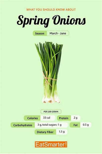 Spring Onion Incredibly Onions Eat Healthful Flavorful