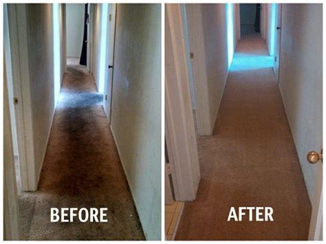 stanley steemer tile cleaning before and after carpet cleaning thanks to san diego