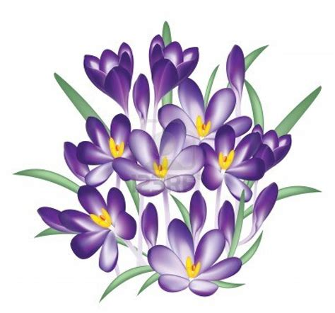 Purple Clipart Megaphone Pencil And In Color Purple Purple Clipart Flower Bouquet Pencil And In Color Purple