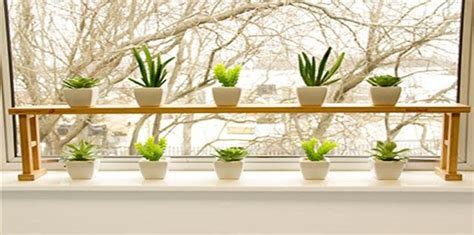 Window Ledge Garden by Window Sill Shelves For Plants Plants For Homes