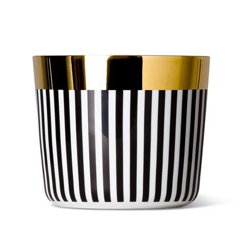 sip siege goblet chagne collection ca d 39 oro vertical stripes