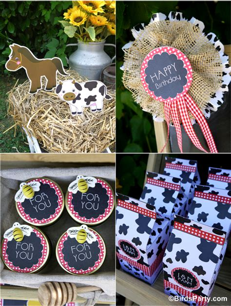 kids joint barnyard farm birthday party party ideas