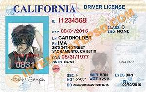 Florida  Driver U0026 39 S License And Make Your On Pinterest