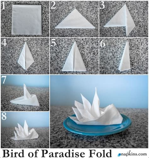bird  paradise napkin fold   fold  napkin