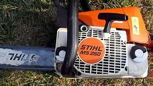 Related Keywords  U0026 Suggestions For Stihl Ms250