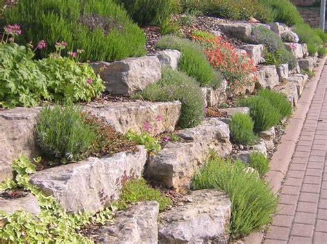 Pflanzen Für Hangbefestigung by Muschelkalk Mauersteine Suche House Garden