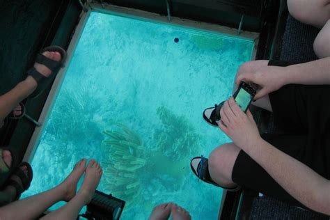 Glass Bottom Boat Key West by Key West Day Trip Glass Bottom Boat Ride From Fort