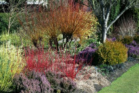 winter gardens  cambridge  stuart logan cc  sa