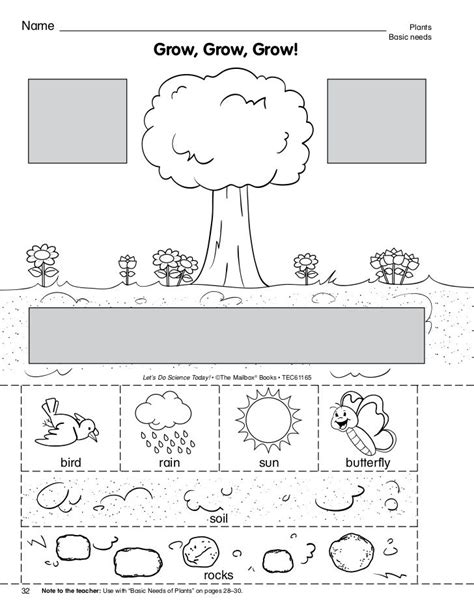 what a plant needs to grow worksheet αναζήτηση