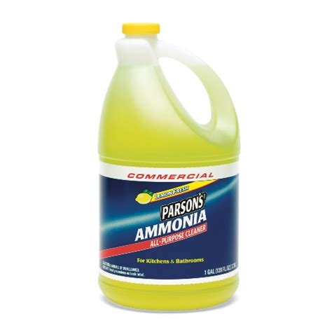 ammonia cleaning arm hammer parsons ammonia all purpose cleaner sku cdc84856