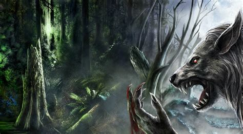 Real Scary Wolf Wallpaper by Backgrounds Wallpaper Cave