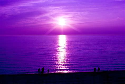 All Shades Of by All Shades Of Purple Bring Me Purple