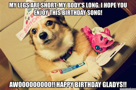 Corgi Birthday Meme - birthday corgi
