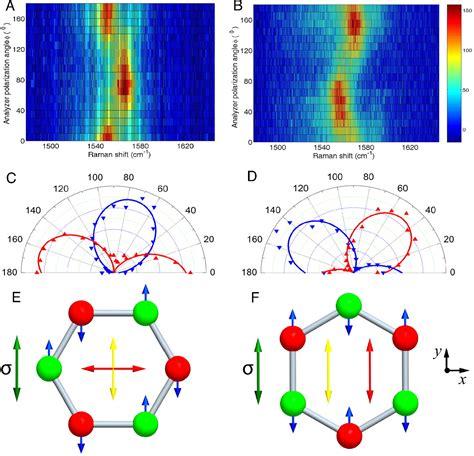 phonon softening  crystallographic orientation  strained graphene studied  raman