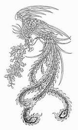 Phoenix Tattoo Drawing Chinese Fenix Ave Bird Tattoos Mythical Dibujos Birds Colorear Coloring Drawings Tatuajes Adult Tatuaje Head Printable Mandalas sketch template