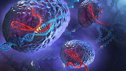 Dna Cells Genetics Spirals