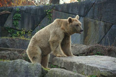 stuttgart zoo wilhelma