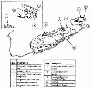 5 0 Mustang Gas Tank Diagram