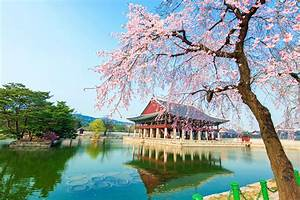 Seoul Wallpapers Images Photos Pictures Backgrounds