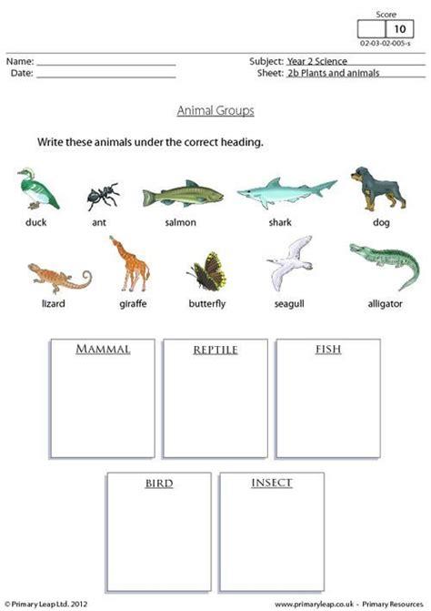 primaryleap co uk animal groups 1 worksheet science