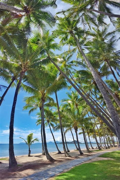 Palm Cove  Official Tourism Site. Horta Da Moura Hotel. Mole Creek Lodge. Hyencos Hotels. The Anatolian Hotel. The Wheeldale Hotel. Mole Creek Guest House. Mercure Hotel Hannover Medical Park. Hotel Tami Residence