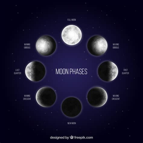Moon Phases Background Blue Background With Moon Phases In Realistic Design