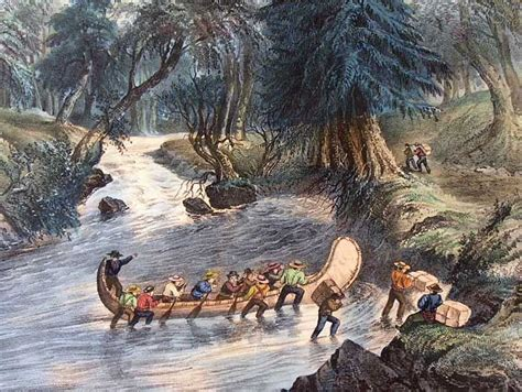 Canoes Used In The Fur Trade by Voyageurs Social Studies Canada Wolves