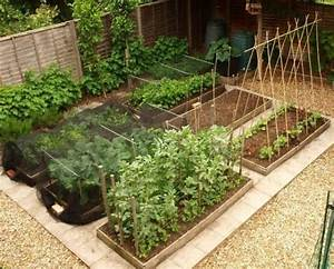 Free Vegetable Garden Layout  Plans And Planting Guides