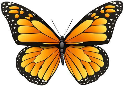 orange butterfly png clip art  web clipart