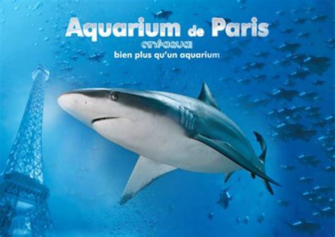 vivent les requins expressions d enfants
