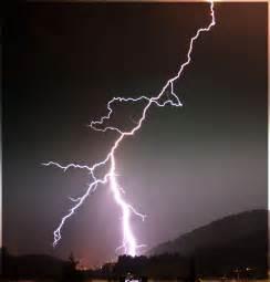 Lightning Strikes Animals