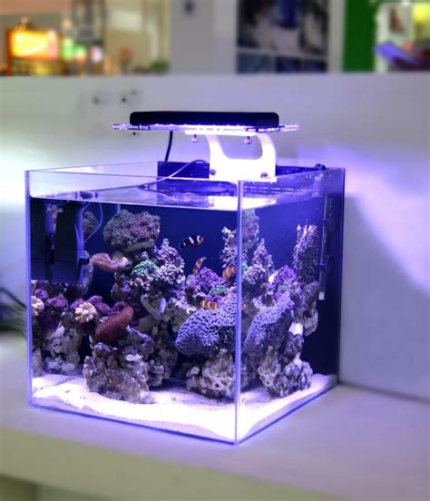 All Marine All Aquarium by Buy Wholesale Zet Light From China Zet Light Wholesalers Aliexpress