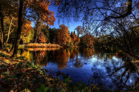 Autumn Lake Wallpapers by Autumn Lake Trees Birds Landscape Wallpaper 2378x1582