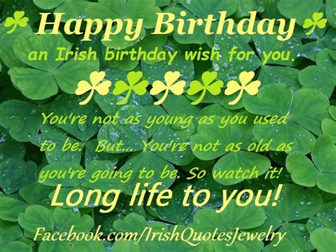 Irish Birthday Meme - 1000 images about ireland irish quotes blessings proverbs recipes and sayings all things