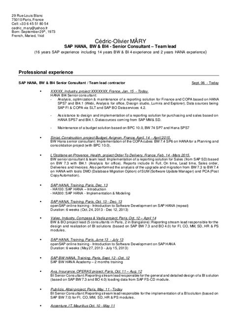 sap sd technical consultant resume writerzane web fc2