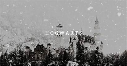 Potter Harry Aesthetic Weasley Twins Hp Uploaded