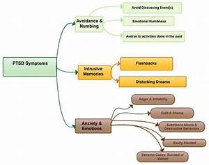Ptsd Signs And Symptoms Flow Chart