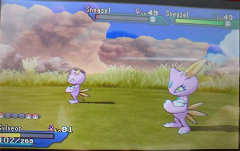 [7] Looking for a shiny male Sneasel to evolve into ...