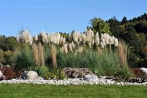 Bambus Pflanzen Sichtschutz : sichtschutz im garten 22 raffinierte ideen anregungen ~ Markanthonyermac.com Haus und Dekorationen